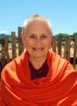 Picture of Swami Girijananda